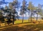 """Kupiškio marių sala """"Uošvės Liežuvis"""" bei Aukštupėnų piliakalnis su gyvenviete"""