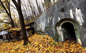 Lenkų bunkeriai Vilkpėdėje