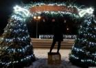 Molėtų miesto eglė ir eglučių alėja 2020
