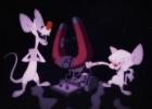 Animacija. Animaniacs
