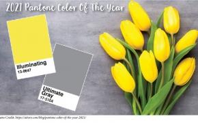 2021 metų Pantone spalva