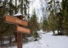 Karo ir gamtos temos Plokštinės miške