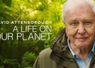 David Attenborough: A LIFE ON OUR PLANET (2020)