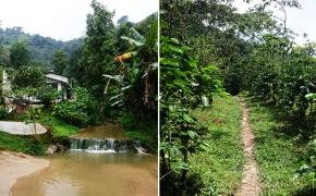 Kaip dvi merginos rutiną į savanorystę Kolumbijoje keitė. I dalis