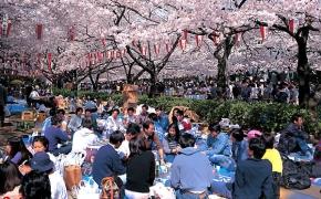 Festivaliai pasaulyje balandžio mėnesį